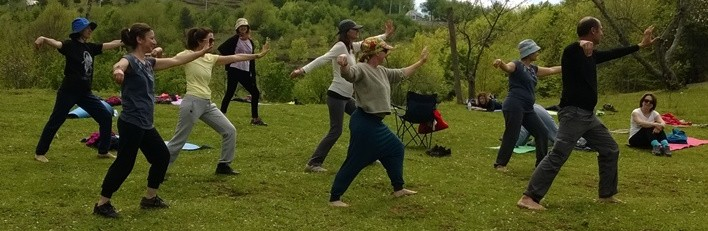 Summer Hill Tai Chi Club